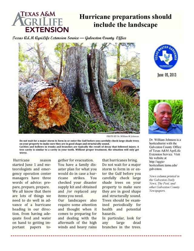 06-05-2013 - Hurricane preparations should include the landscape by Dr  william M  Johnson-page-0