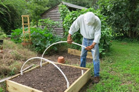 Gardening-Under-Cover-fitting-pvc-hoop-over-raised-bed_width579